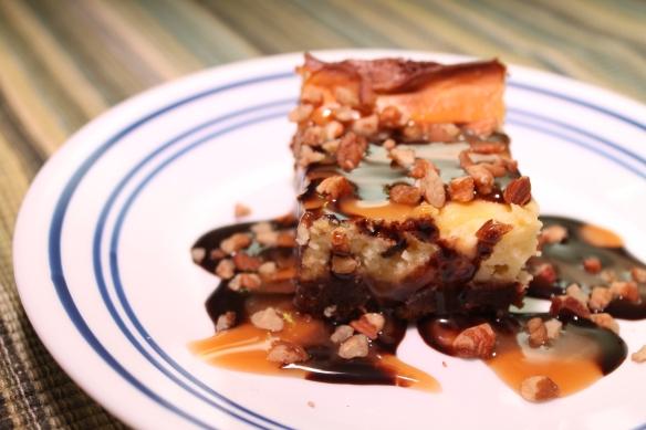 Turtle Brownie 2